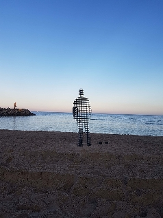 April Pine - Sculpture By The Sea